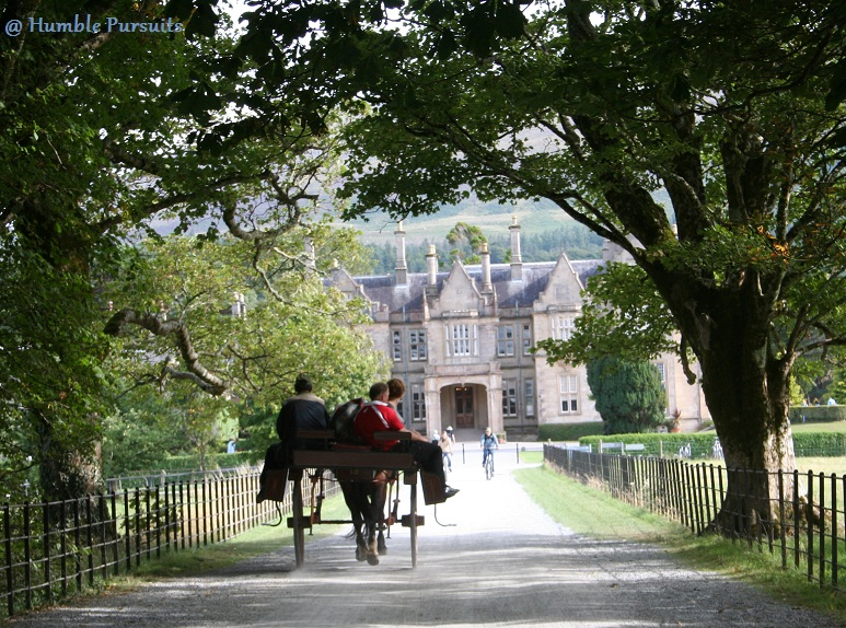 Muckross House Carriage